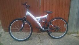 Silver barbarian mountain ridge bike
