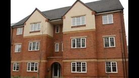 DOUBLE & SINGLE ROOM TO LET IN BURTON ON TRENT CITY CENTRE ... NICE WARM HOME