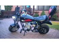 Pocket bike ,mini harley davidson 30 cc