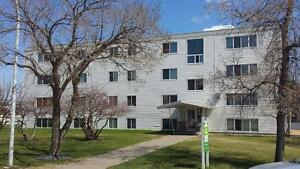 Cloverdale Apartments - Rest of May Free - Great Monthly...