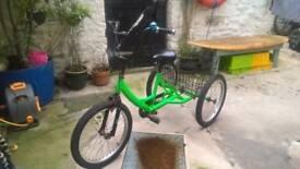 Tricycle. Large Child's Tri-Mantis bike