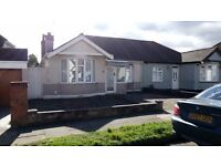 Semi-detached 2/3 bed bungalow in Rise Park for sale. Requires extensive renovation.
