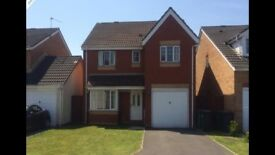 Modern 4 Bed House for Rent