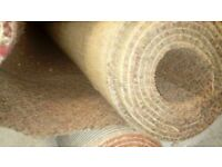 Top Quality wool carpet with underlay 12' by 13'