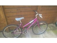 Ladies mountain bike. Used. Good tyres. Good working order.