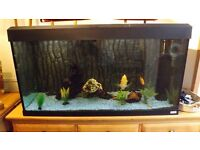 Fluval Aquarium 200l with Complete kit