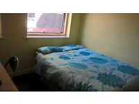 Sumptuous sizeable single room with fridge freezer TV double wardrobe and laminated flooring