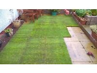 Turf for sale whilst fresh