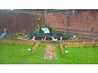 complete garden pond setup-fibre glass pond very big-filters/pumps/plants/lights/stones