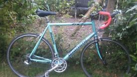 bianchi ml3 23.5 in alloy racing bike,carbon forks 18 speed,beautiful bike