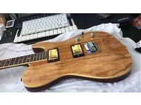 Fender Special Edition Telecaster Spalted Maple HH + Gibson Pickups