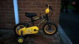 Apollo Stinger Childrens Bike