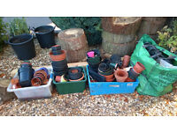 free for collection various flower pots