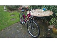 """26"""" ladies / girls cycle 15 speed gears virtually unused, in as new condition."""