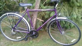 raleigh pioneer 23 in frame hybrid city bike,new tyres fitted,magnificent classic