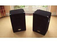 Gemini disco speakers plus amp