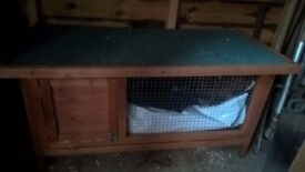GUINEA PIG/RABBIT HUTCH- good condition with plastic tray for easy cleaning