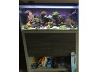 Marine fish tank and stand Fluval m90