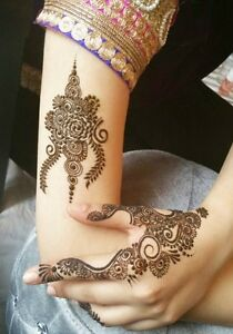 Book your in-home Henna Party, private appointment...or drop-in Windsor Region Ontario image 9