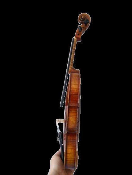 Hochwertige Violine 4/4 aus Bubenreuth Anno 2001 in Detmold