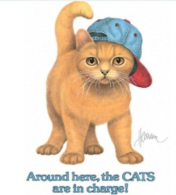 cat shirt, Cats Are In Charge, Cute Kitten, Baseball Cap with Advice, Funny
