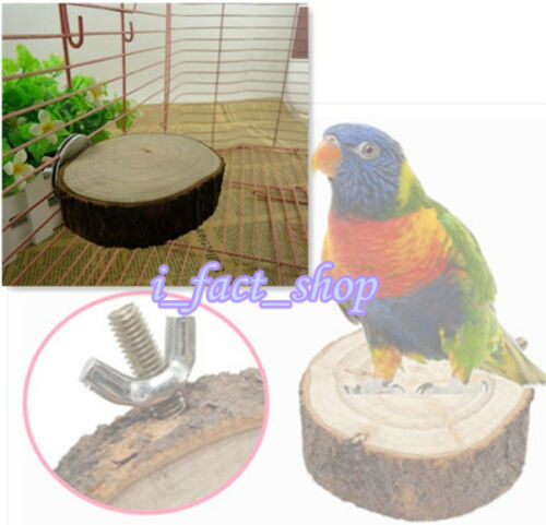 Good Place Wooden Coin Parrot Bird Cage Perches Stand Platform Pet Budgie Toy IF
