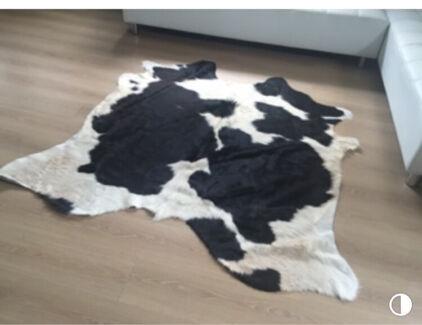 Cow hide rug Broadbeach Waters Gold Coast City Preview