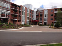 Luxury Condo with $480/ month mortgage -2 km from UWO