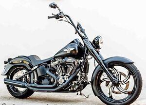 2012 Harley Davidson Fatboy Lo Durack Palmerston Area Preview