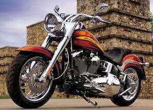 Harley Davidson Chrome Fork Sliders Brand New f/ 2007 Fatboy