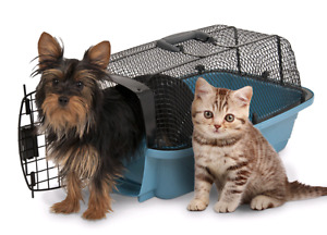 Petmate Look and See pet carrier