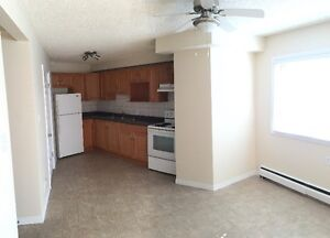 Fully Renovated 1 Bedroom by Southgate LRT , Reduced Rent !!