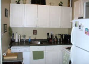 Centrally Located, 2 Bedroom Apartment For Rent, $975.+