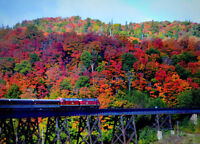 Agawa Canyon Oct 1 - 5 with McCoy Tours
