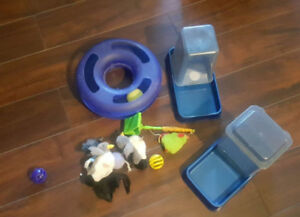 Random Cat toys, Water and Dry food dispensers