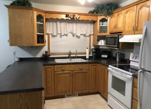 Spacious 4 bedroom home for sale in Minnedosa