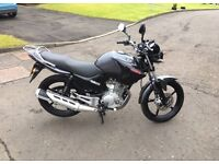 Yamaha YBR 125 - Glasgow, Scotland - £1400