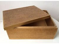 Beautiful Gold Painted Scaled Decorative Jewellery Storage Box