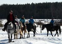 Holiday Horsecamp for Girls