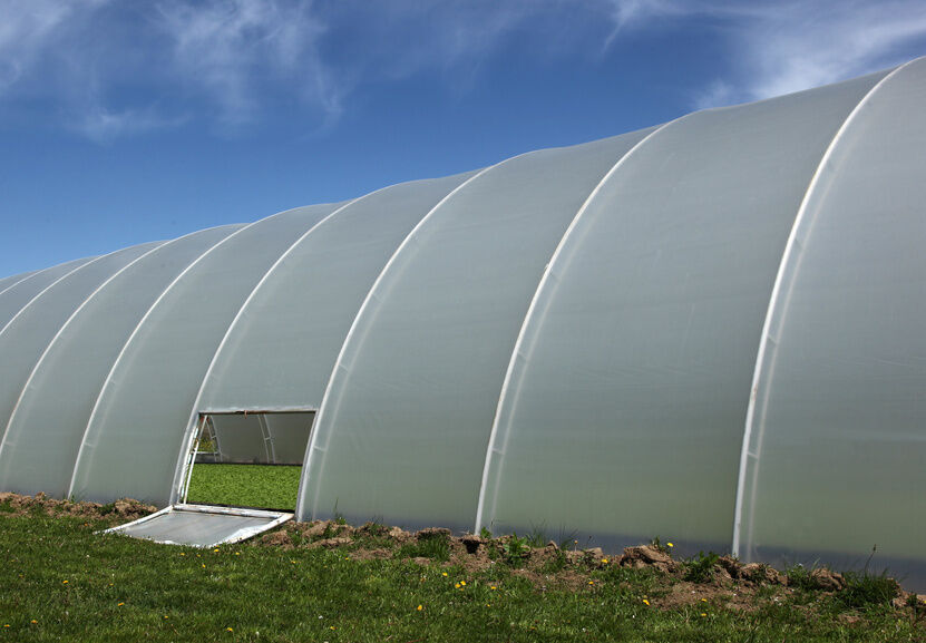 Greenhouse poles