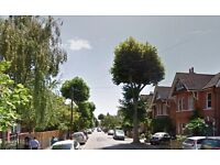 AVAILABLE NOW - Modern bedsit (shared bathroom) on Wolverton Avenue, Kingston upon Thames, KT2 7QF