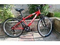 Apollo Slant Junior Mountain Bike