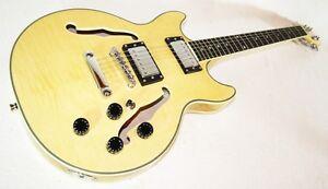 Jazz & Blues E-Gitarre, Semi Acoustic natur