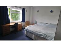 Double room for rent in large detached house . Live in landlady , 2 existing students.
