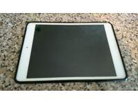 iPad mini 1 16GB Wi-Fi and Cellular