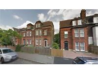 Crystal Palace SE19. Spacious Refurbished & Redecorated 1 Bed Furnished Flat with Communal Garden