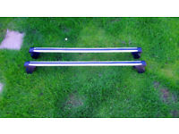 Genuine Ford roof bars