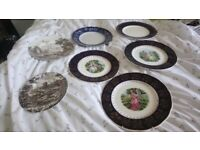 7 old plates.