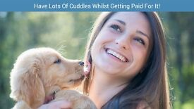 Pawshake are seeking Pet Sitters and Dog walkers! Sign up today! Free insurance included. N-U-L