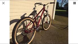 Identiti p60 jump bike dmr Alex rims gusset ns